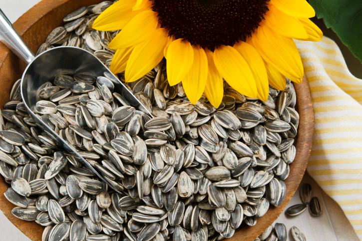 Closeup of Sunflower Seeds